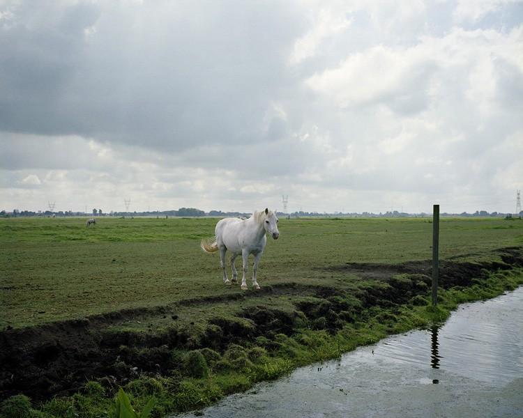 http://maartenboswijk.com/files/gimgs/th-14_15_scan-111005-0002sharpened.jpg